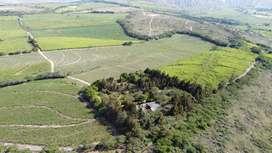 Hacienda 89 hectares en Salinas, Imbabura