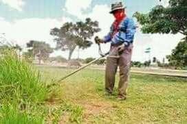 Servicio de Jardineria Y en General