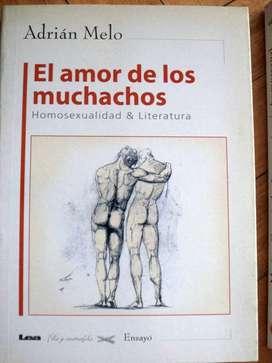 El amor de los muchachos. Homosexualidad y literatura- Adrián Melo