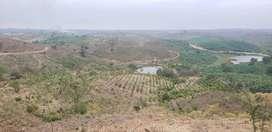 Terreno 32hec al pie del canal sector Limoncito via a Costa