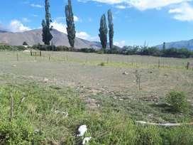 Terreno tafi del valle