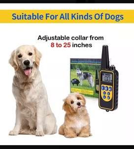 Collar de entrenamiento para perros