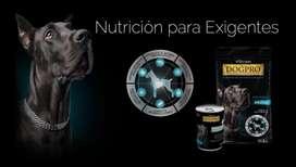alimento premiun dogpro 25% proteina