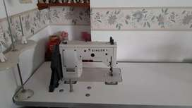 Máquina de coser y bordadora