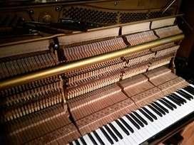 Afinación de Pianos en Cap y Prov, Amp Exp, buenos aranceles