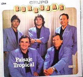 disco vinilo Grupo burbujas paisaje tropical