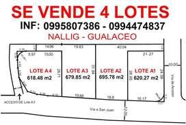 Vendo 4 lotes en Nallig - Gualaceo desde 620m2