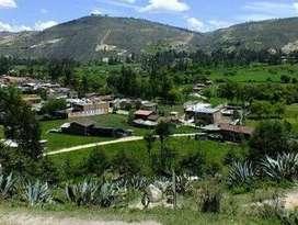 Venta de Terreno - Cajamarca