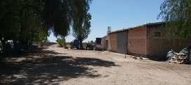 Zapata  100 - U$D 297.000 - Campo en Venta