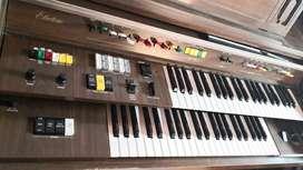 Aproveche ocasión: Organo electrico