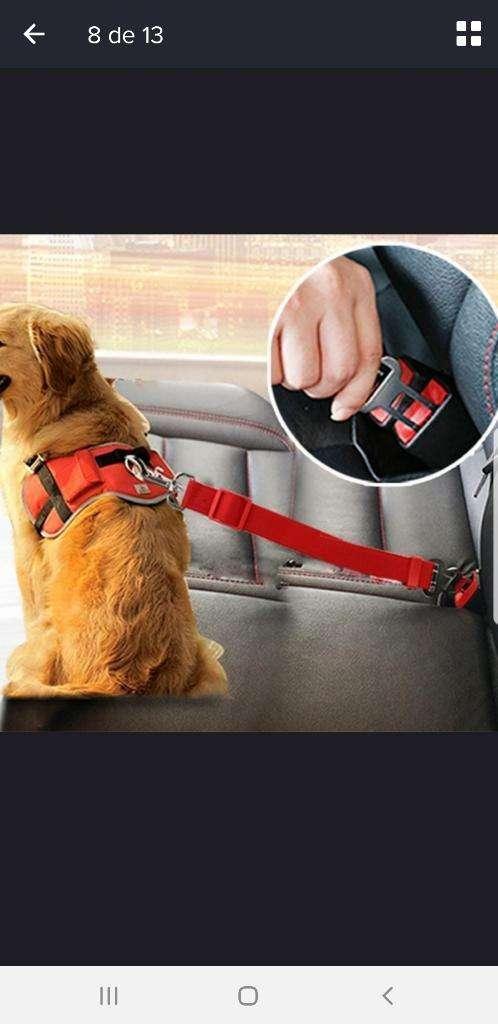 Cinturón de Seguridad para Mascotas 0