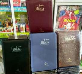 Biblias económicas Rvr 1960