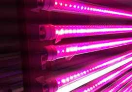 Tubo led full spectum + bastidor