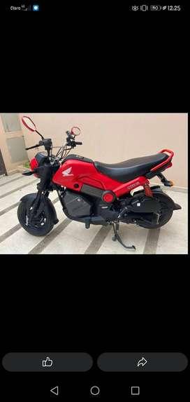 Honda navi 2019