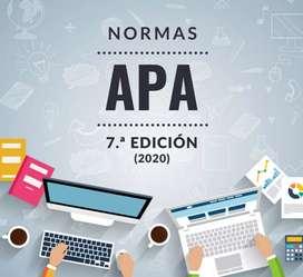Normas APA - Microsoft Excel