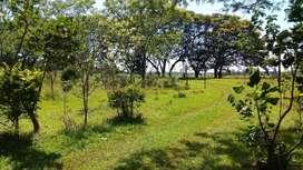 Terreno en San Isidro Posadas