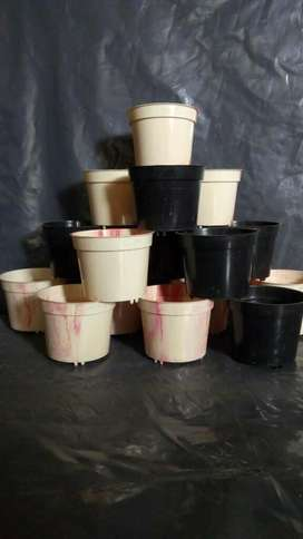 Macetas Plasticas para Cactus