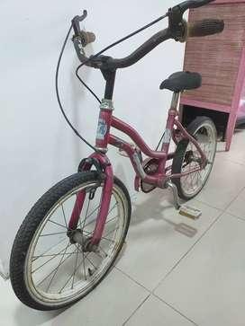 Bicicleta niño rod. 16 $5500