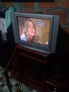 Lindo televisor en buen estado