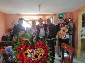 Las mejores canciones llamanos ya Mariachis los Diamantes desde 35USD