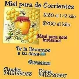 Miel de Eucaliptus de Corrientes