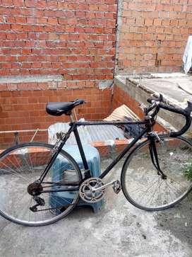 Bicicleta novato