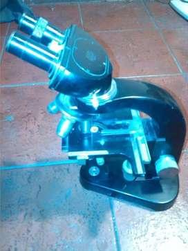 Microscopio Binocular Leitz Wetzlar