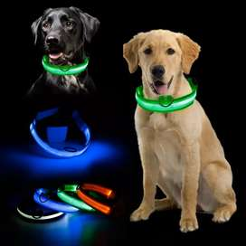 COLLAR LED RECARGABLE