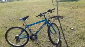 Bicicleta Halley rodado 24
