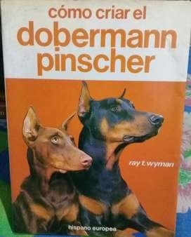 Dobermann Pincher