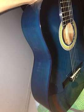 Guitarra palmer 10/10