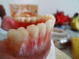 Queres ganarle a la Crisis? Hacète Mecànico Dental