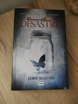 Jamie McGuire, Maravilloso Desastre