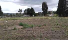 Quinta Agrícola Y Ganadera
