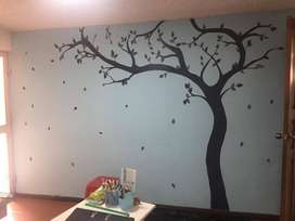 Dibujo en paredes /murales