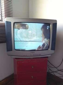 Se vende televisor Challenger 20 pulgadas