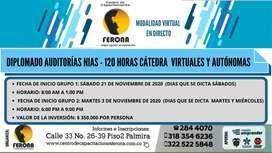 DIPLOMADO AUDITORÍAS NIAS  /  120 HORAS CÁTEDRA  VIRTUALES Y AUTÓNOMAS