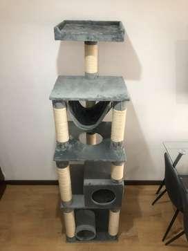 Gimansio para gatos