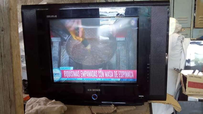 "Tv slin de 21"" 0"