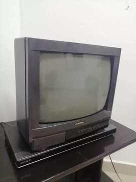Tv 14 plgas y DVD Sony