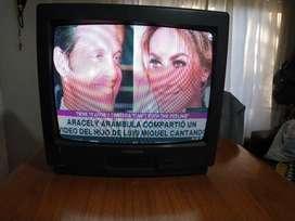 Televisor marca Grundig 21 pulgadas usado anda excelente