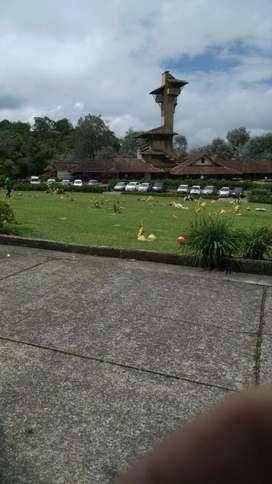 Lote Cementerio La Ofrenda
