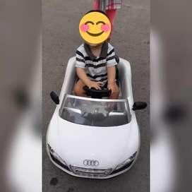 Paseador Audi