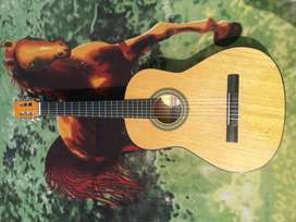 fantastica guitarra fransisco solis