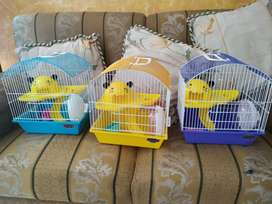 Jaula para hamsters roedores