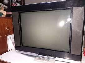 Televisor bgh 21'' slim