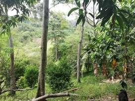 Lote en la Mesa Cundinamarca