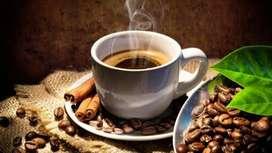 distribuidores para cafe organico Lojano