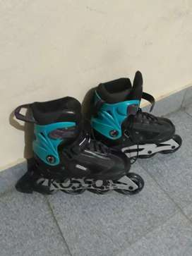 Rollers kossok talle 36 al 39