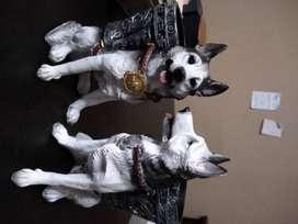 Macetas de perritos y mas